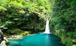 奇跡の清流!仁淀ブルーで知られる仁淀川支流の「にこ淵」へドライブ 高知県いの町