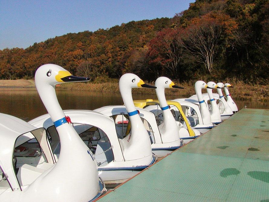 ボート池には足で漕ぐスワンボートのほか、手こぎ式のボートもある。