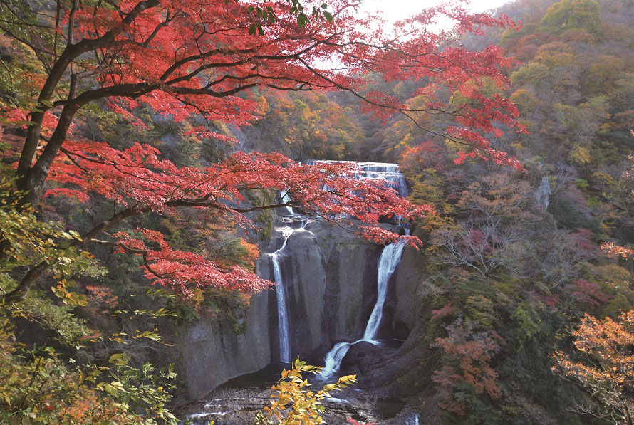 常陸水戸藩の藩主、徳川光圀や徳川斉昭もこの滝を歌に詠んだという。