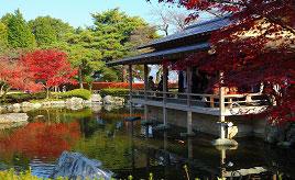 秋の紅葉&冬のイルミネーションが毎年好評!鯖江のシンボル西山公園へ行こう 福井県鯖江市