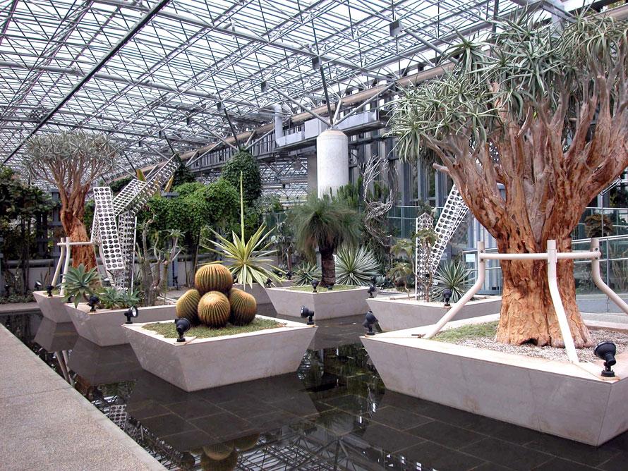 人気の多肉植物とオブジェで構成されたプランツギャラリー。ひとつひとつの植物の形をじっくり観察してみよう。