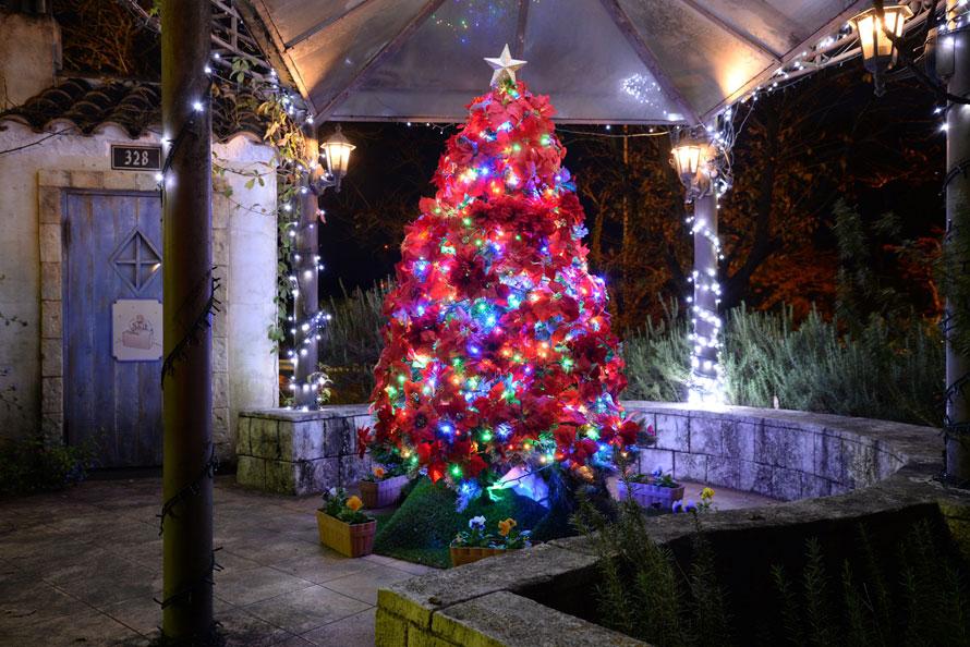 星の王子さまの世界にきらめくクリスマスツリー。ファンタジックな空気に包まれる。
