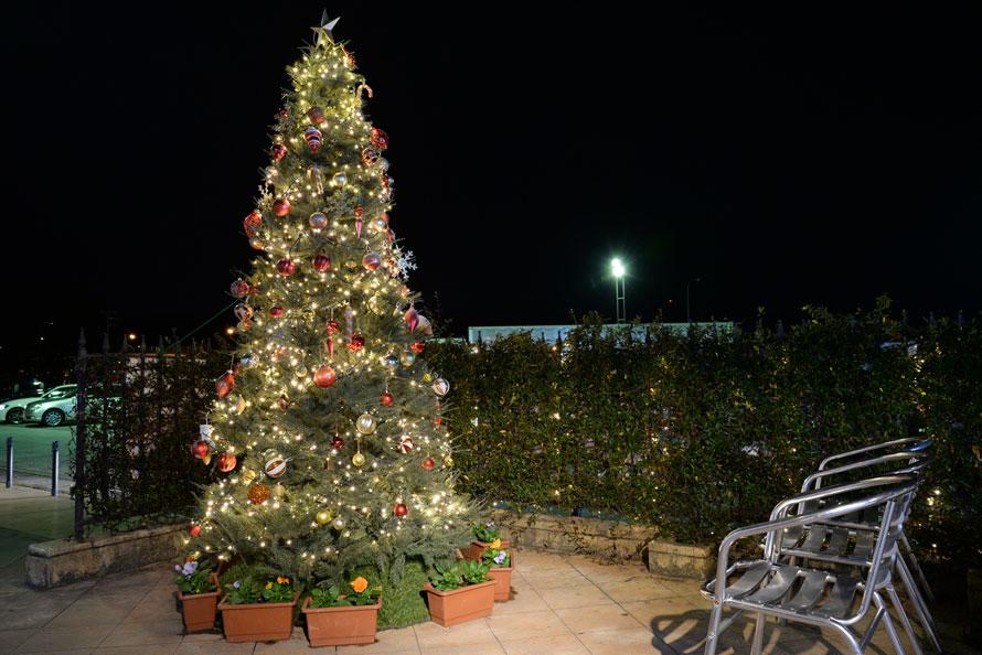 クリスマスツリーは2019年2月2日まで飾られている。