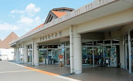 桜島小みかんを使った爽やか風味のグルメが人気!桜島にある道の駅でひと休み 鹿児島県鹿児島市