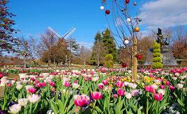童話作家H.C. アンデルセンの故郷、デンマーク・オーデンセの風景が広がる!ふなばしアンデルセン公園 千葉県船橋市