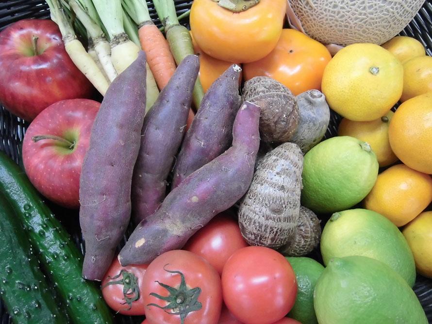 「静岡生鮮マルシェ」は、旬の産直野菜や高原果実、シラスやサクラエビ、焼津のマグロの加工品、御殿場のブランド「富士湧水ポーク」を使用したハムなど、静岡県産の海産物・畜産物・農産物が充実。営業時間9~19時。