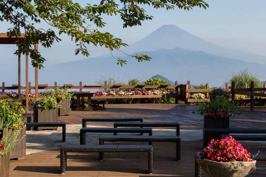 「石張りエリア」にはベンチを設置。日当たりが良いのでひなたぼっこにぴったり。