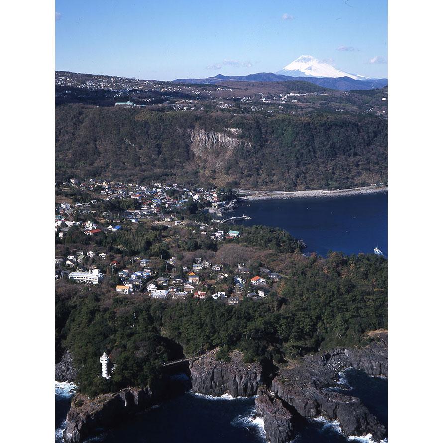 波風による侵食で削られた約9kmにわたる溶岩岩石の海岸。約4000年前に大室山の噴火により生まれた。