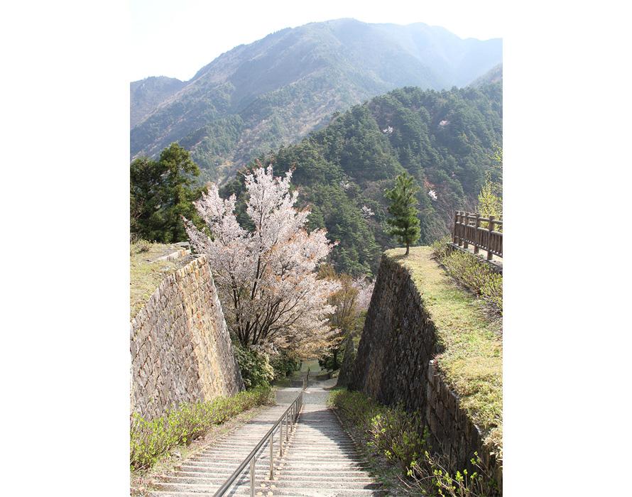 220段の長大な階段に生まれ変わった「インクライン(傾斜面を走る軌道)」。かつては、端出場から東平に運ばれてきた物資を荷揚げするために使われていた。