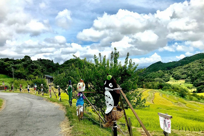 8月中旬から9月末にかけて「かかしコンテスト」が開催される。棚田のオーナーが作った20体ほどの個性的なかかしがずらりと並ぶ。