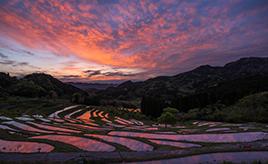 東京から2時間の壮観な棚田・大山千枚田をドライブ