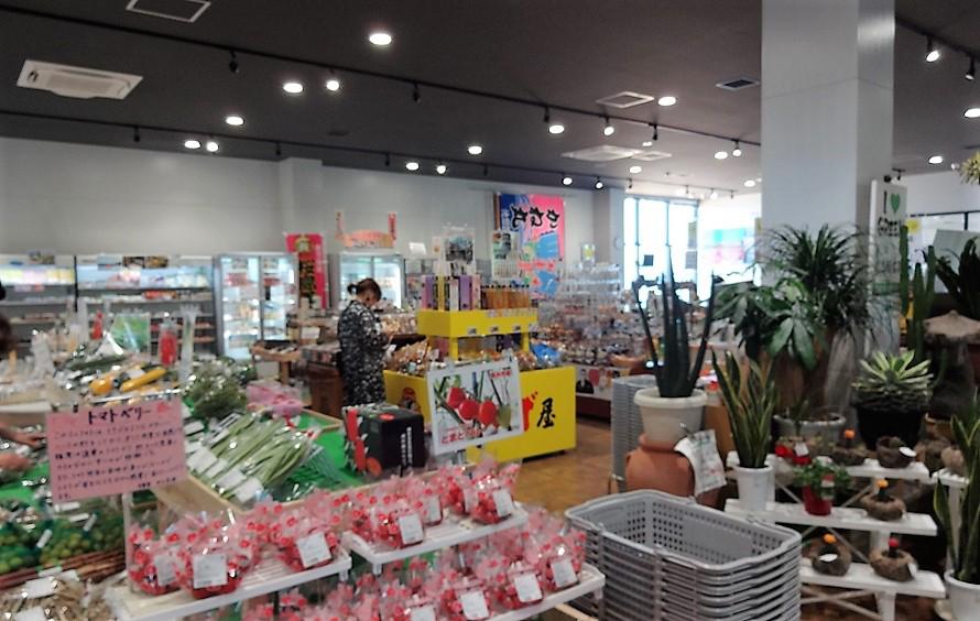 「物産館(マルシェ)」や「さつま工房はまびら」ではお土産品や特産品を販売。垂水で採れたインゲンやエビを使った加工品、芋かりんとう、ピーナッツ豆腐など、地元の味がずらりと並ぶ。