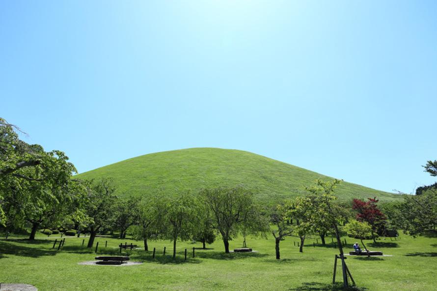 ふもとの「さくらの里」から見た大室山。なだらかな曲線が美しい。
