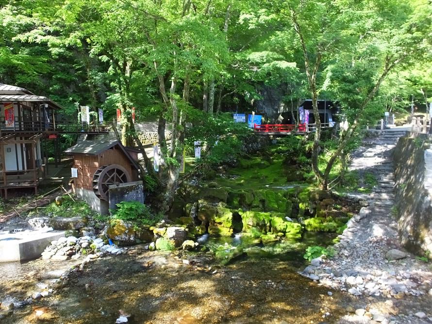 龍泉洞の敷地内は季節の植物が見られるほか、龍泉洞の水が飲める水飲み場、カフェ、土産販売店などの施設も整備され散策が楽しめる。