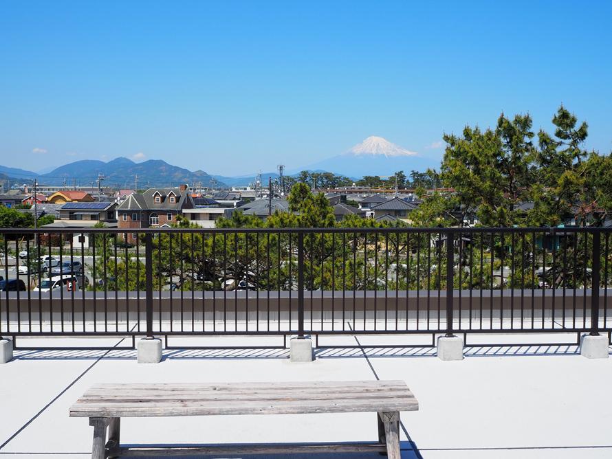 センターの屋上からは松の木越しに富士山が見える。富士山を眺めながらのんびり過ごすのもおすすめだ。