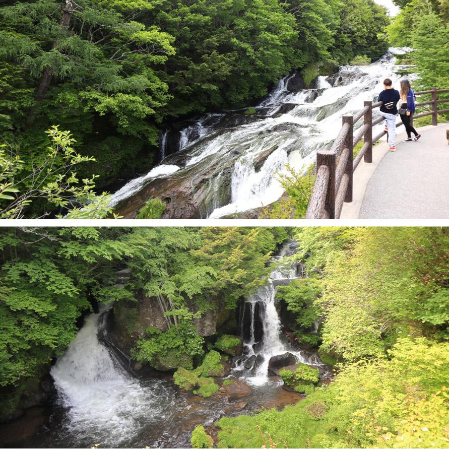滝の東側は遊歩道になっており散策も楽しめる。ぼこぼこの流れは胴体のうろこ、滝壺は頭に見えなくもない