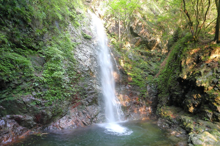 都内で唯一「日本の滝百選」に選ばれた払沢の滝。4段の滝で落差は62m。遊歩道から見られるのはその最下段である落差23.3mの部分のみ。冬季には氷結することもある。一帯の渓流は近隣の飲料水になっているので、汚さないように心掛けよう。