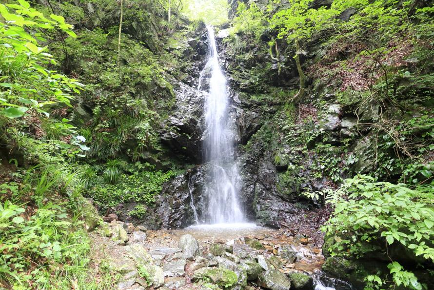 龍神の滝の落差は約18m。その昔、周囲にはムジナが多く「ムジナの滝」と呼ばれていた。その後、いつしか滝壺に棲み付いた大蛇の姿が龍に似ていたことから「龍神の滝」と呼ばれるようになったと伝わっている。