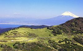 伊豆の稜線を走る爽快ドライブルート ~西伊豆スカイラインコースガイド ~