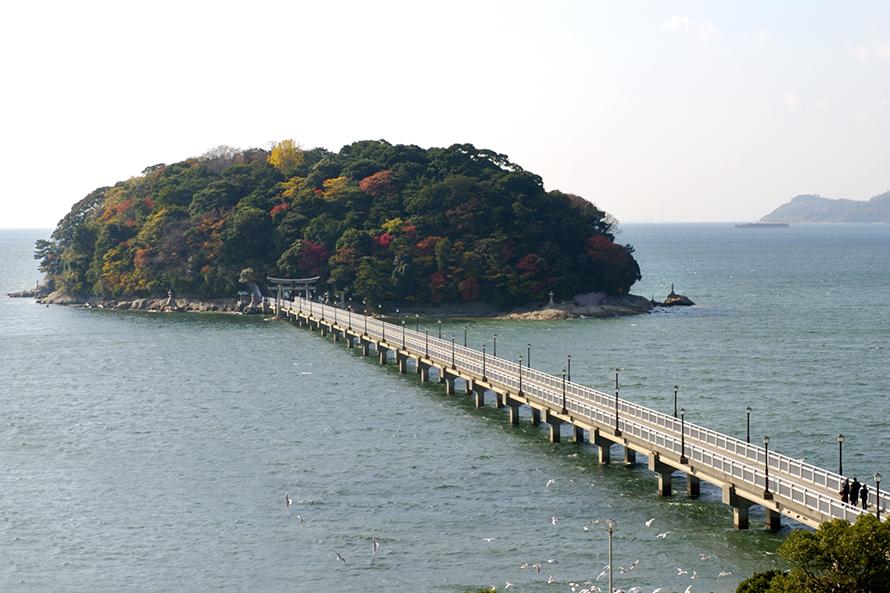 蒲郡のシンボルともいえる天然記念物の島。長さ387mの橋で陸地と結ばれており、島を半周する海沿いの遊歩道とあわせてウォーキングも楽しめる。島の中央部にある「八百富(やおとみ)神社」は日本七弁財天のひとつで、開運・安産・縁結びにご利益があるといわれる。