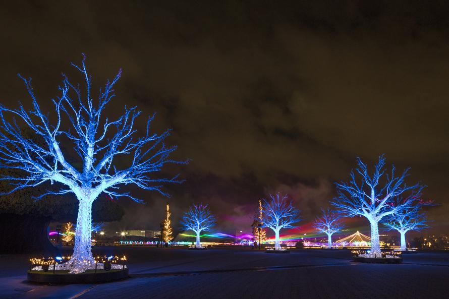 フルカラーレーザーと美しい樹形型イルミネーションを使った演出が幻想的な「オーロラの森」。最新の光技術を駆使した、空間演出のエンターテインメントを楽しもう。