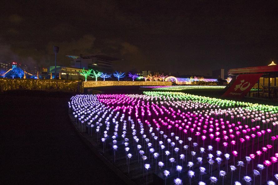 七色に輝く庭「ローズガーデン」には、なんと6400本もの光るバラが咲き誇る。本物のバラのように見えるライトがゴージャス。