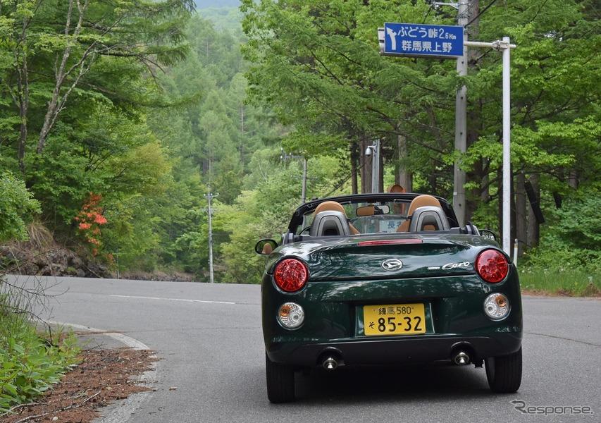 長野-群馬県境のぶどう峠へのアプローチ。