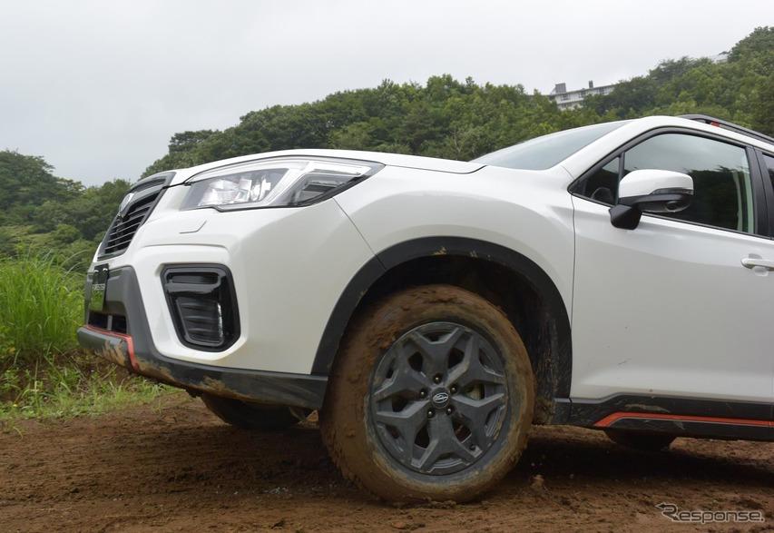 タイヤが空転しながらも車体が左右に振られることなく登る。
