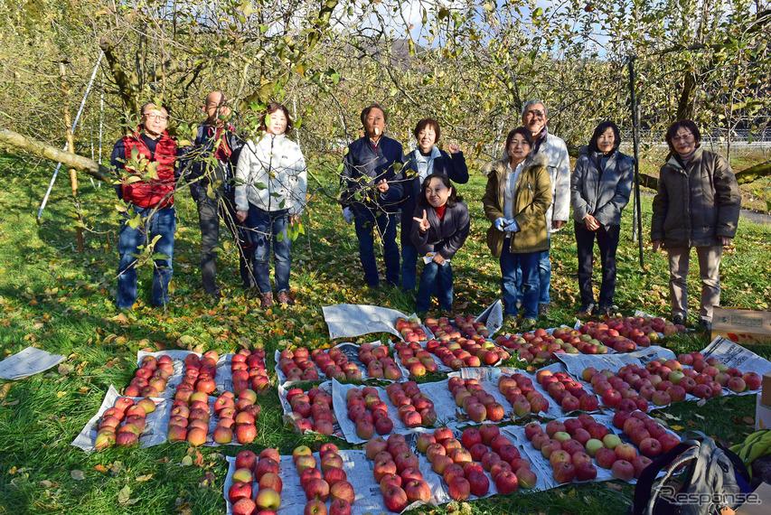 昨年より個数は若干少なかったものの、満足の行く収穫量であった。