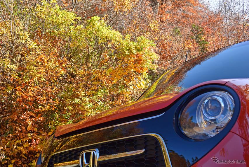 ボディカラーと紅葉がよくマッチしていた。
