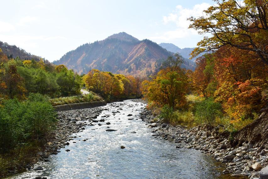 御池から下りきったところにある只見川が福島~新潟を分ける。古くは越後と会津の国境でもあった。川の流れを見ると、上流で散った枯葉が水中で乱舞していた。